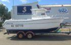 610 FISH